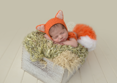 Newborn_photographer_cleveland_ohio_fox__9085