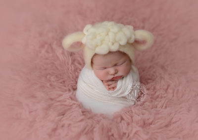 newborn photographer cleveland ohio _5496