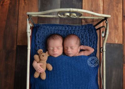 web newborn photographer ohio